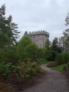 Blarney Castle peeking through the trees.