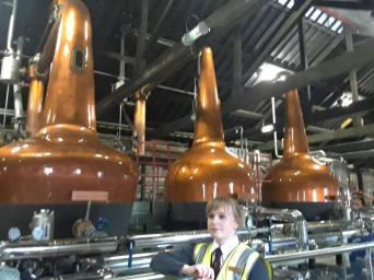 Copper neck stills that distill whiskey.