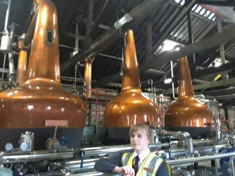 Copper neck stills that distill whiskey.
